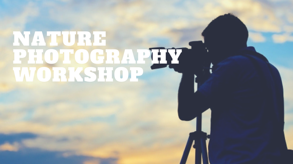 nature photography workshop-4.png